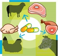 http://www.speakgreenms.org/wp-content/uploads/2013/04/antibiotics-in-meat1.jpg