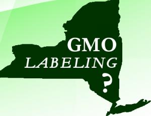 (Credit: GMO Journal)