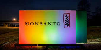 Rainbow-Monsanto-sign